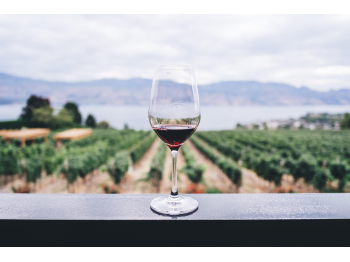 View of red wine glass overlooking a field