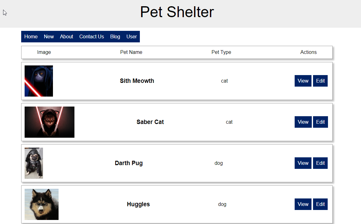 Screen shot of Pet Shelter App