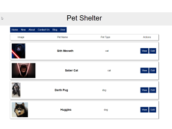 Screenshot of Pet Shelter App